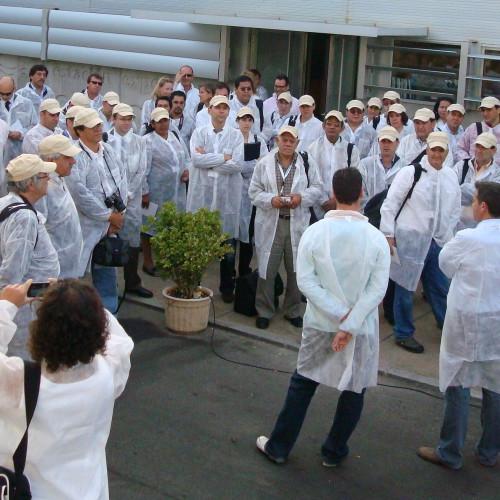 Organización Palmerillas 2010
